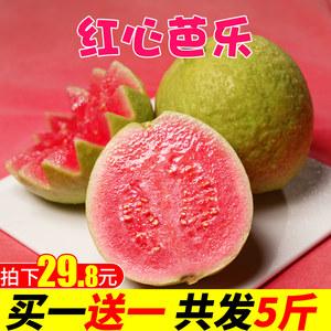 红心芭乐番石榴5斤 当季现摘新鲜孕妇水果特产批发包邮巴乐胭脂红