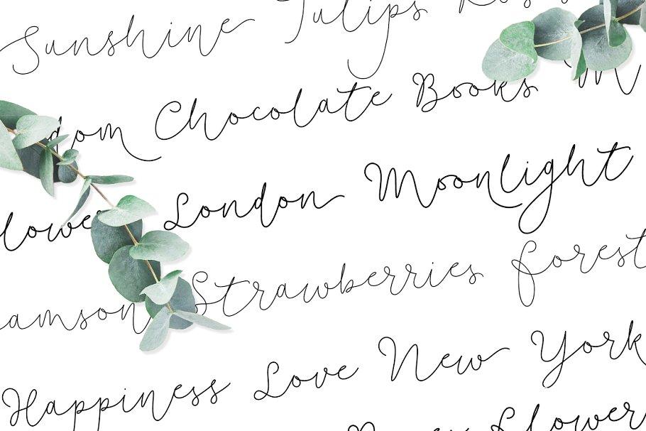 柔软的手绘字体 Soft Whisperings Font and 100 Extras设计素材模板