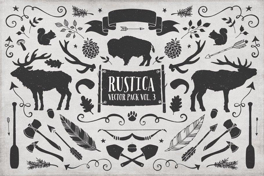 大气的手绘笔刷字体素材 Rustica Vol. 3 + Birch Brush Font设计素材模板
