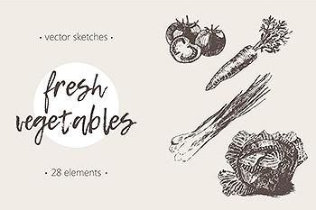 素描蔬菜插画 Set of high detail vegetables