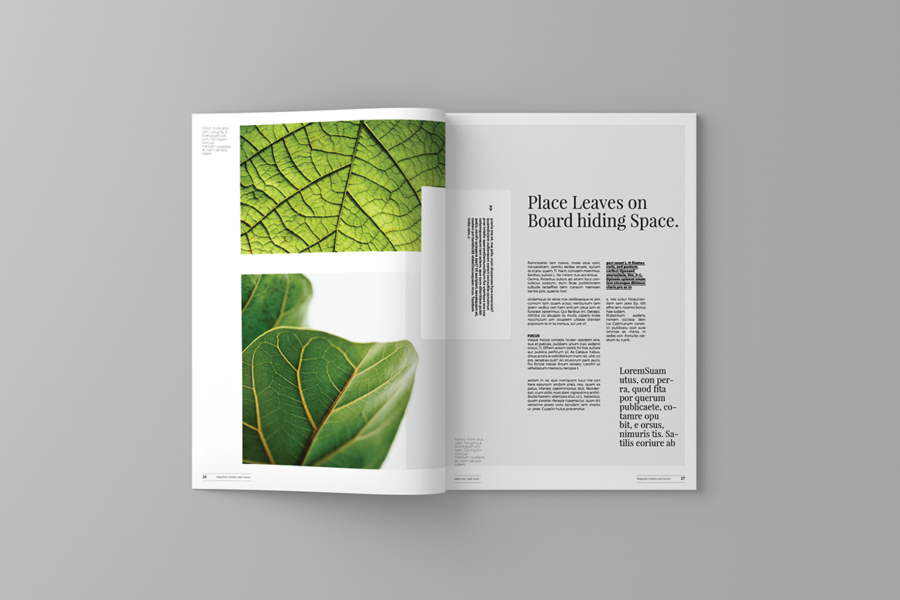 garden-and-leaves-magazine-template-6.png