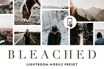 手机版lightroom艺术风景风格lightroom移动端预设lightroom人像预设[DNG]