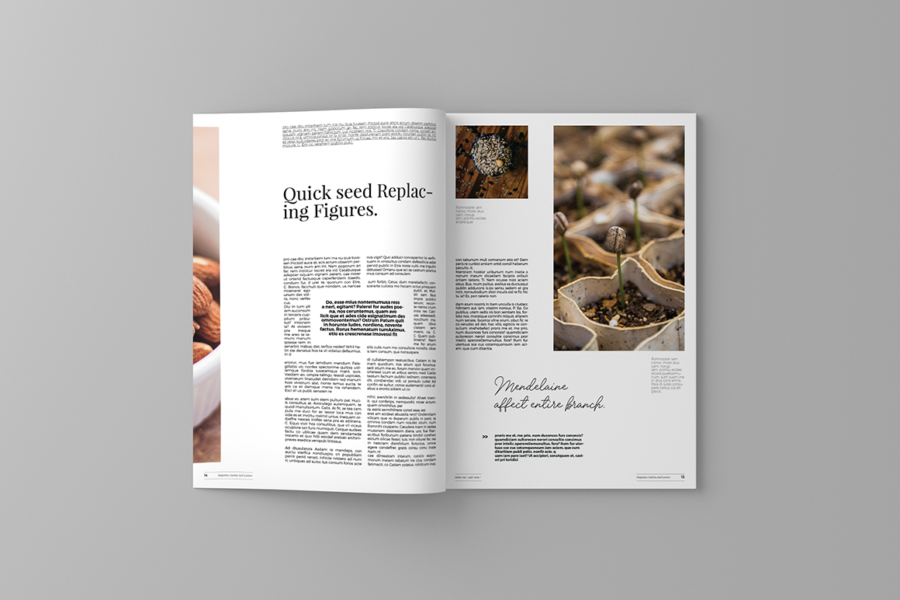 garden-and-leaves-magazine-template-14.png