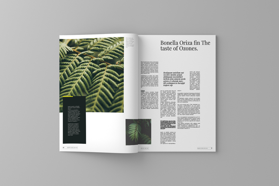 garden-and-leaves-magazine-template-3.png