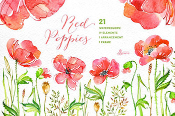 手绘水彩花卉logo设计 Red Poppies. Floral collection