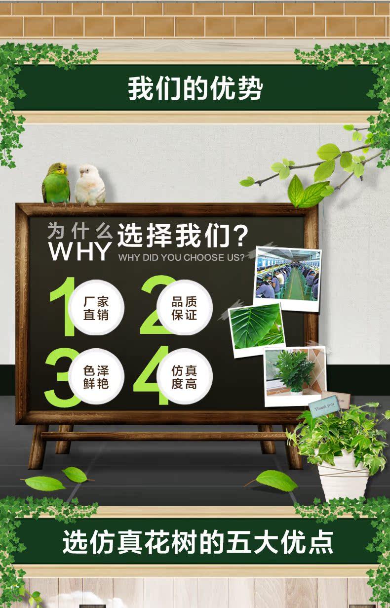 小盆栽详情页_13.jpg