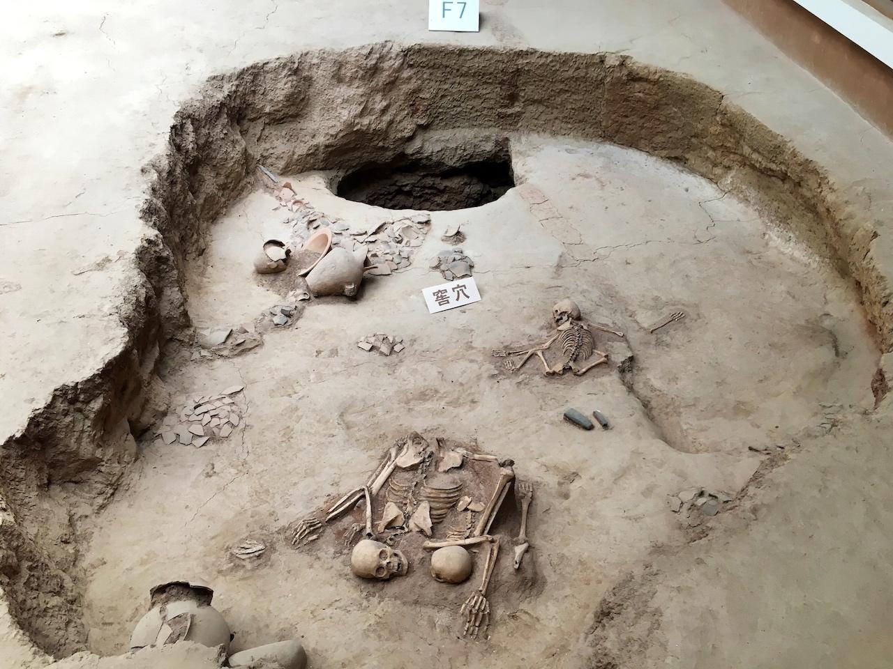 青海有4000年前的史前灾难遗
