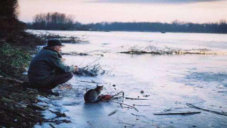 冬天如何快速上鱼?不妨从这几方面着手