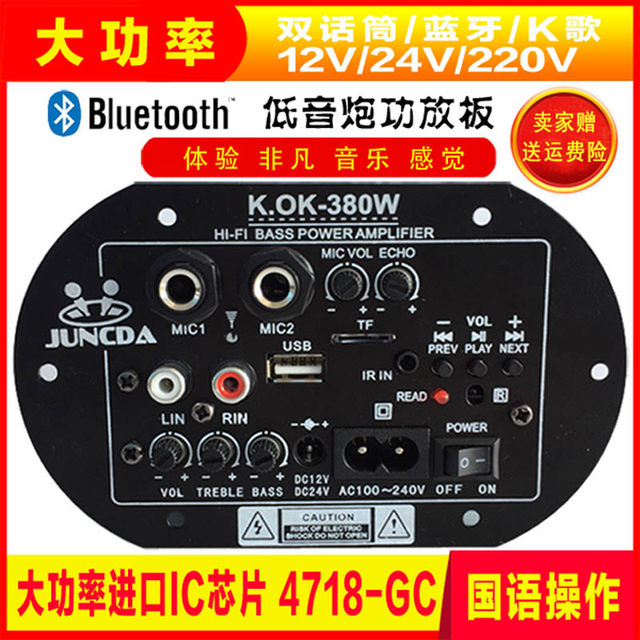 Subwoofer board dual microphone with Bluetooth 220V12V24V high power car onboard motor audio motherboard modified speaker accessories