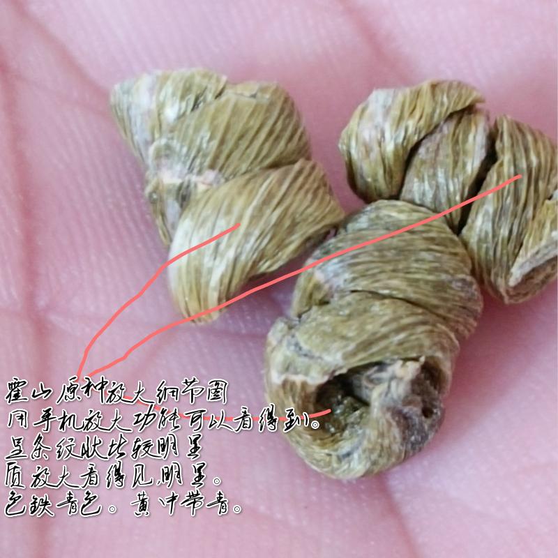 4年仿野生好的铁皮枫斗胶质浓厚 精选 霍山枫斗石斛产地大量批发(图54)