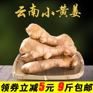 新鲜生姜云南小黄姜农家嫩姜蔬菜调味品怀姜9斤批发包邮非老姜