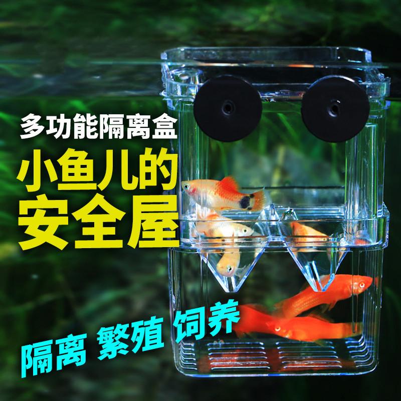 鱼缸v鱼缸盒产卵悬浮式鳌虾白点漂浮亚克力乌龟生小孔雀内置孵化器