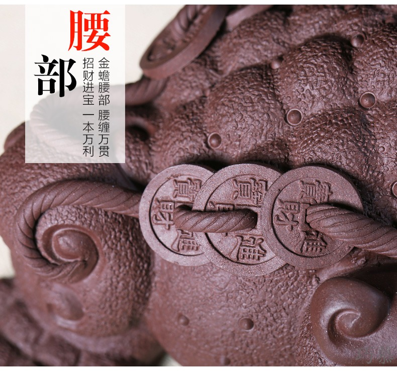 Qiao mu YH purple sand sculptors to hide old checking purple clay golden toad tea pets play tea furnishing articles