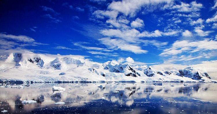 一生要有一次南极之旅,去之前要知道这些