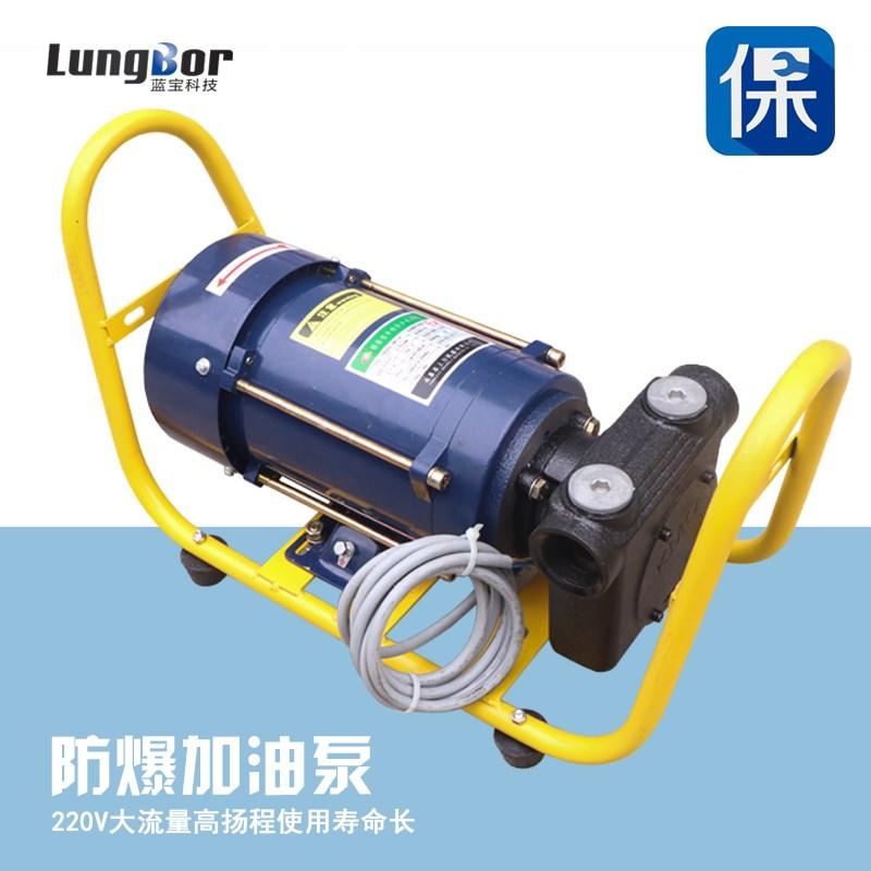 大油泵自吸抽流量220V电机油泵防爆油泵加汽油自吸甲醇大功率750W