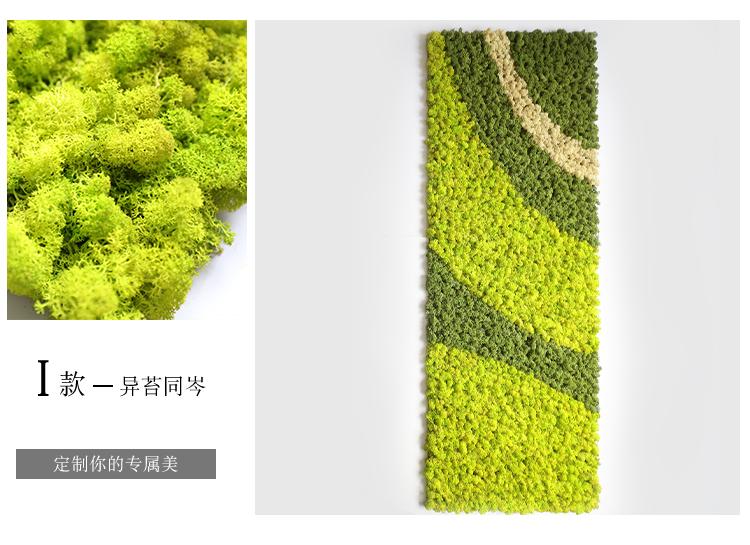 包下水管道_永生苔蘚植物牆真苔蘚保鮮永生花盒花DIY材料仿真植物牆微景觀