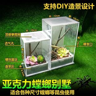 Богомол акрил подача поддержка коробка кормление Mantis поддержка коробка насекомое коробка насекомое подача поддержка коробка богомол ландшафтный дизайн вилла насекомое коробка