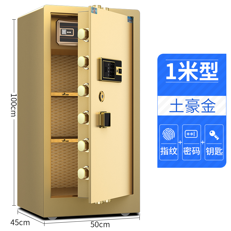 1 METER SINGLE DOOR LOCAL GOLD (FINGERPRINT + PASSWORD + KEY)