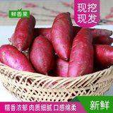 现挖农家自种精品紫薯 10斤 券后18.8元包邮