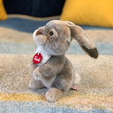 意大利trudi 野兔Lino兔子毛绒玩具可爱兔子公仔玩偶生日礼物娃娃