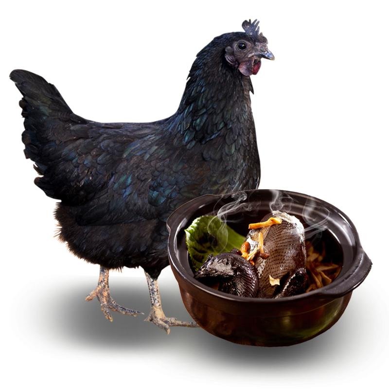【买1送1】新鲜现杀农家土鸡乌鸡发冷链