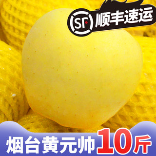 Golden Shuai Apple Yellow Marshal Apple 10 Sweet Powder Apple Golden Shuai Baby Fresh Snake Fruit Noodle Yellow Banana Milk