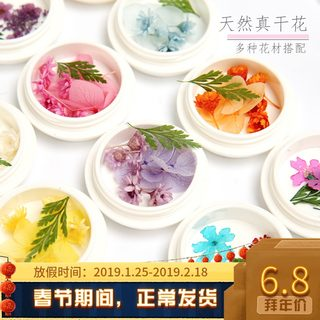 Lin Shazhai Dried Flower Face Petals Cosmetics Cups Photographs Photos Little Fairy Cosmetic Small Butterfly Nail