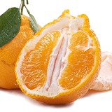 罗克珊 新鲜当季椪柑丑橘 5斤装 券后16.9元包邮0点开始