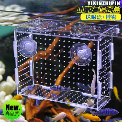 Fish tank isolation box acrylic isolation box fish seedlings hatching box aquarium small fish seedlings hatching breeding box multi-grown