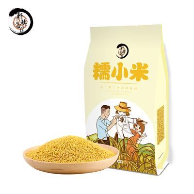 【买3送1】糯小米500g早餐小米粥农家小米东北小米杂粮小米粥原料