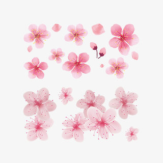 Antique cherry blossom tattoo paste canopies tear nevus flower peach blossom clavicle flower inlay small fresh web celebrity lovely tattoo paste