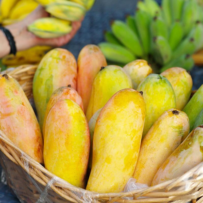 泰国进口 暹罗果园 释迦摩尼芒果 5斤