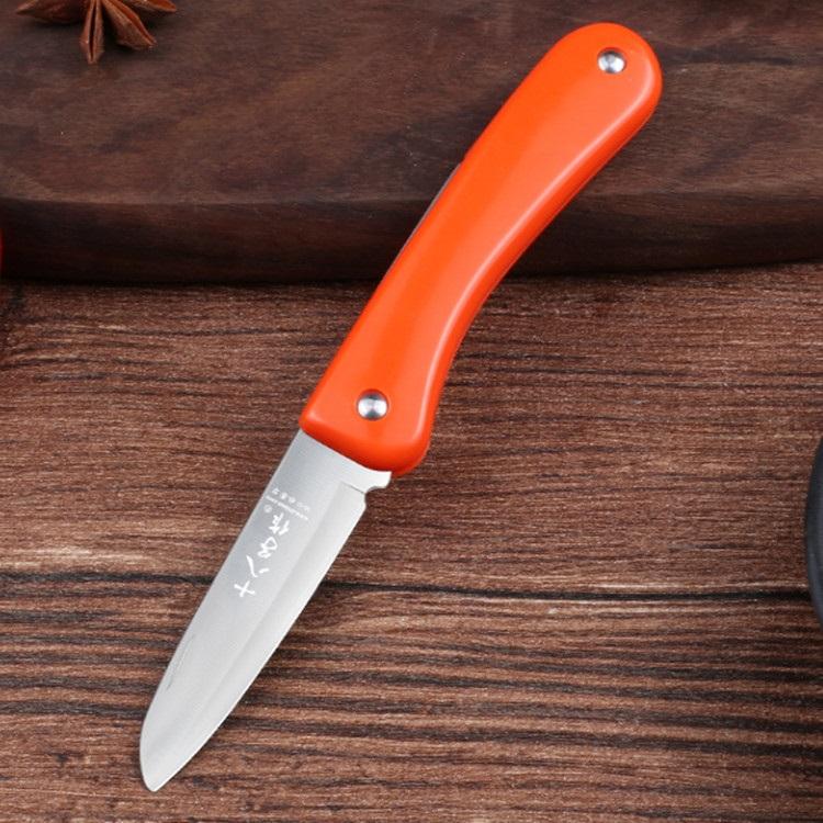 十八子作水果刀家用不锈钢瓜果刀套装长款宿舍用带刀套学生切瓜刀