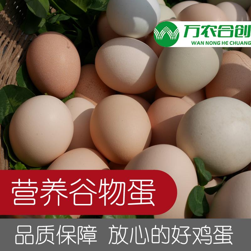 农家散养草鸡蛋乌鸡蛋30枚
