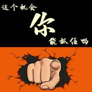 wordpress 淘宝客插件