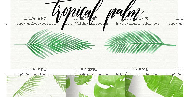 小清新水彩手绘树叶热带棕榈叶植物叶子插画背景海报矢量图片素材插图(36)