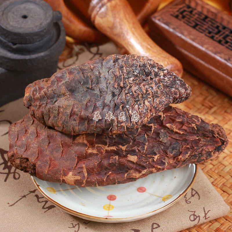 肉苁蓉/大芸/个子
