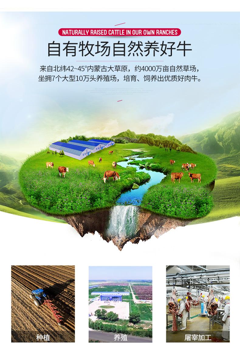北京奥运会供应商 科尔沁 内蒙古牛脊骨 500g*5袋 图10