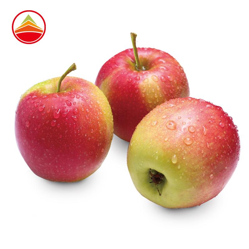 0点!波兰进口 久泰 双色苹果