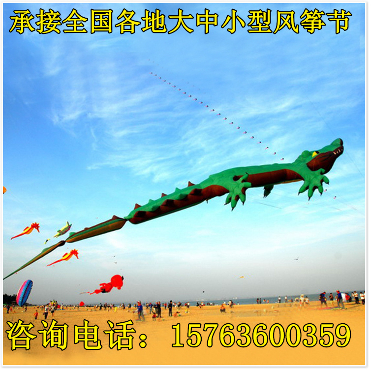 潍坊风筝活动厂创意活动展览风筝节制作天成飞鸢大型风筝展