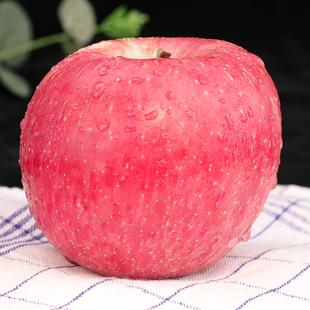 【助农丑苹果】新鲜当季10斤一箱带应季萍果陕西红富士冰糖心整箱