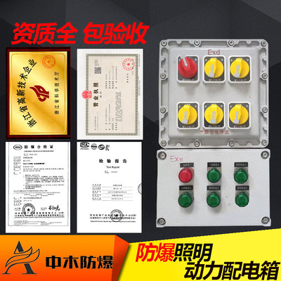 BXD53-5 explosion-proof distribution box terminal box explosion-proof power cabinet explosion-proof switch box explosion-proof light box instrument box