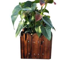 碳化防腐实木花箱阳台花盆
