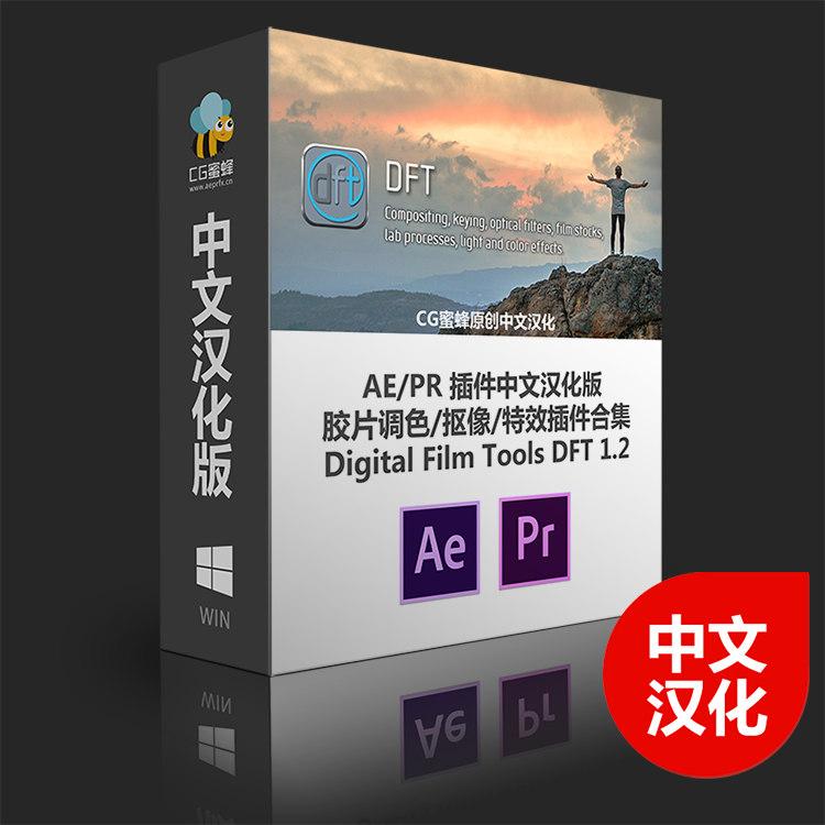 【S465】视觉特效调色插件集  丁达尔 真实自然光照滤镜DFT Digital Film ToolsDFTV1.2中文版