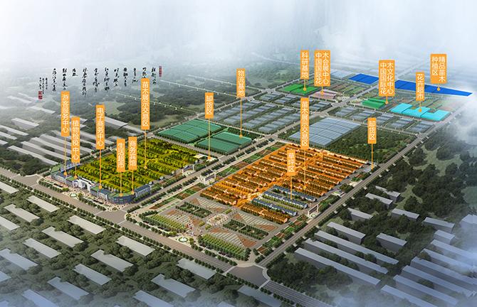 杭州湾花木城-中国绿化苗木网
