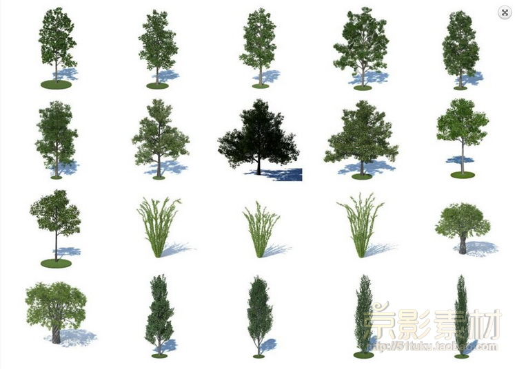 HQ Plants 1 for Cinema4D-180个城市景观树种C4D模型