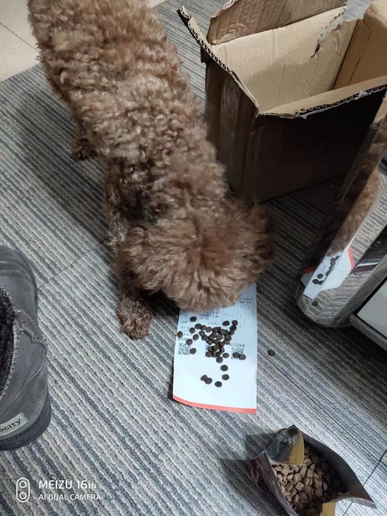 这个牌子的国产狗粮色泽黝黑锃亮,气味纯正,家里狗很喜欢吃
