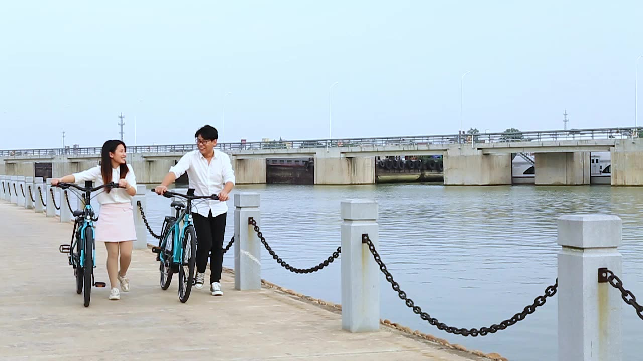 New arrival bike electric with mid battery bike/electric bicycle city e-bike for lady