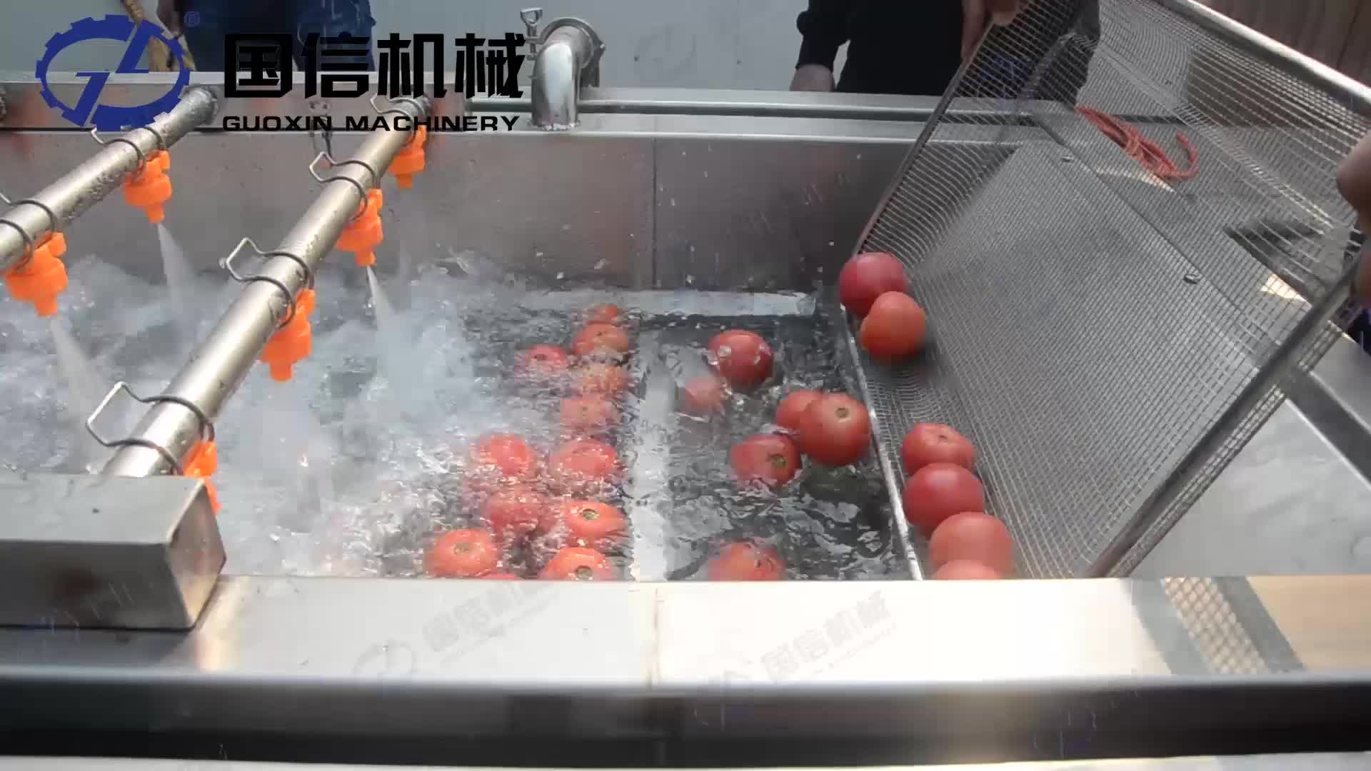 Stainless Steel Air Bubble Fruit Commercial Ozone Vegetable Washing Machine