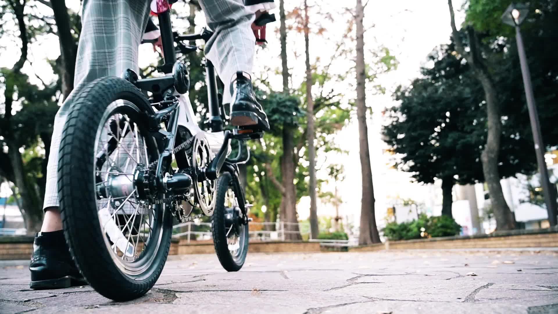 Barato e Garantia de Qualidade e bicicleta 16 polegadas dobrar bicicleta elétrica